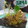Шоколадный пирог Дача